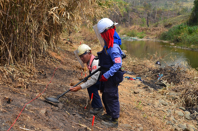 Two Irish Aid-funded HALO Trust demining staff search a minefield together in Ba Huy Village, Cambodia. Photo credit: HALO Trust