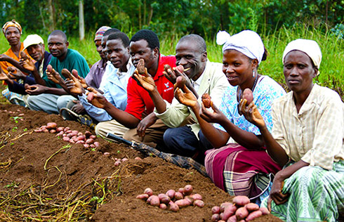 Potato farmers in Malawi gather in Bembeke Village